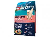 Ontario Adult Large Fish & Rice 15 kg +5 kg ZDARMA